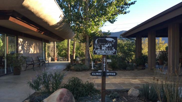 Humane Society Ventura County