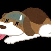 byouki_dog