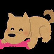 toy-dog