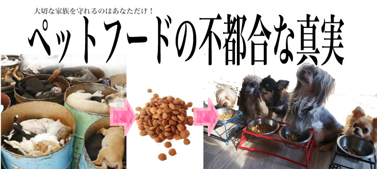 pet-food-cricis-2