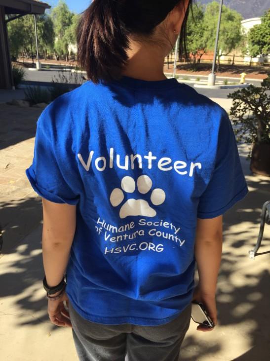 volunteer uniform