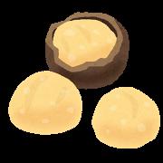 nuts_macadamia