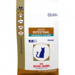 royal-canine-veterinary-diet-cat
