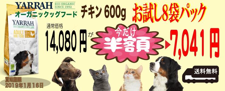 0116-c-600-8pack