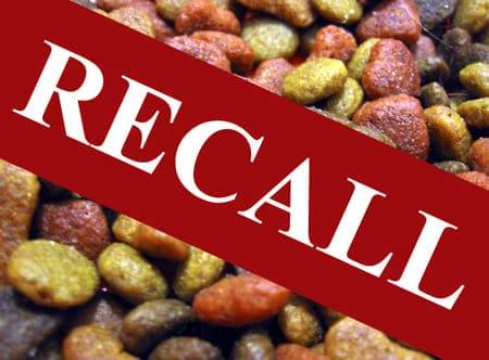 xmassive-recall-of-multiple-dog-food-makers.jpg.pagespeed.ic.X3bH3rKYEz